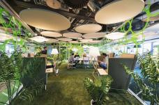 مكتب جوجل في دبلن بإيرلندا وتشعر كأنك في غابة استوائية