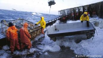رقم 6 - صيادو الأسماك: يعمل صيادو الأسماك في ظروف صعبة أيضا، فهم يقومون بأداء مهمتهم في أعماق البحار وفي ظروف جوية مختلفة. وبالرغم من إمكانية تجهيز قوارب الصيد بأجهزة تقنية للتنبؤ بالتقلبات الجوية إلا أن مهنة صيد الأسماك تبقى من المهن الخطيرة، فالتقنيات الحديثة لا يمكنها التنبؤ بالكوارث الطبيعية المفاجئة