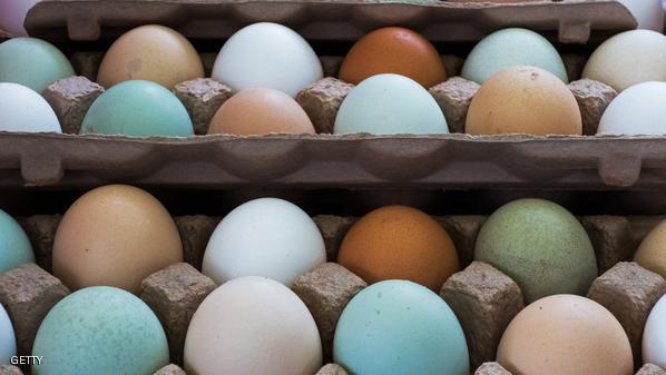.شركة أنتجت بيضا يتمتع برائحة ومذاق الفاكهة عبر إطعام الدجاج قشر فاكهو اليوزو إلى جانب الكرنب وبذور السمسم والذرة