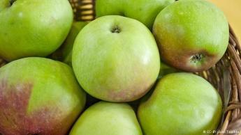 التفاح يُفسد الفواكه والخضروات: التفاح من الفواكه التي تطلق غازالإتلين أيضا، لذا ينصح خبراء حفظ الأطعمة بحفظها بعيدا عن الخضروات والفواكه الأخرى وفي مكان رطب. ولمن لديه كيوي غير ناضج ويريد تسريع نضوجه، عليه بوضعه بجانب تفاحة ناضجة