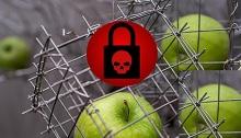 الثغرة الأمنية لبرنامج أيتيونز ينشر فيروس الفدية