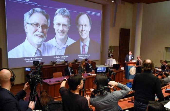 شاشة تعرض صور العلماء الثلاثة الفائزين بجائزة نوبل للطب عام 2019 في ستوكهولم يوم الاثنين 7 أكتوبر 2019