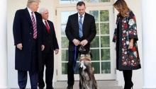 الرئيس الأمريكي دونالد ترامب والسيدة الأولي ونائب الرئيس في البيت الأبيض مع الكلب كونان ومدربه يوم الاثنين 25 نوفمبر 2019
