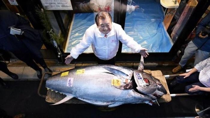 سمكة تونة بيعت في مزاد باليابان يوم الأحد 5 يناير 2020