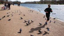 يسمح بممارسة الرياضة في الخارج شرط المحافظة على مسافة تزيد عن مترين بين الأشخاص