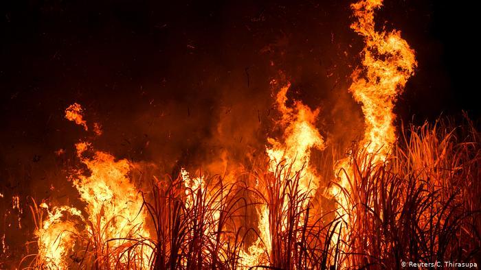 تلوث الهواء بسبب الحرائق يسبب الكثير من الأمراض المتلعقة بعمل الجهاز التنفسي