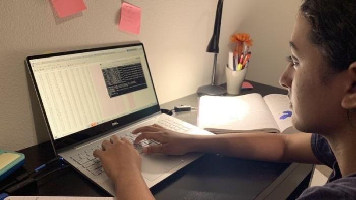 استخدمت أنيكا شيبرولو في بحثها المحاكاة علي الكمبيوتر