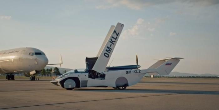 السارة الطائرة وهي تقوم بفرد جناحيها